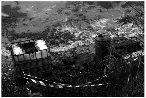 algecirasbarco.jpg