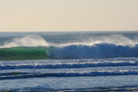 Surf_el_palmar_Conil2.jpg